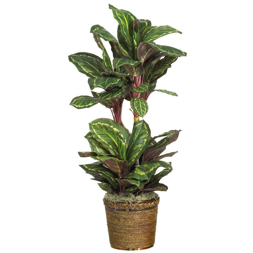 45 in. Maranta Silk Plant with Wicker Basket