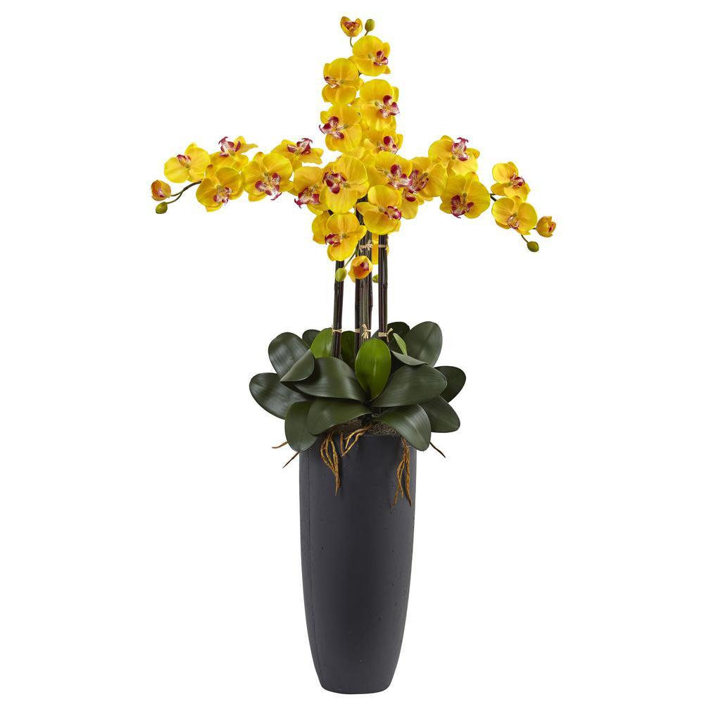 Phalaenopsis Orchid Arrangement with Bullet Planter