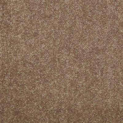 Carpet Sample - Watercolors I 12 - In Color Trail Mix 8 in. x 8 in.