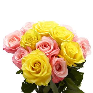 Globalrose 50 pink roses fresh flower delivery 50 birthday pink 50 stems of roses 25 yellow and pink mightylinksfo