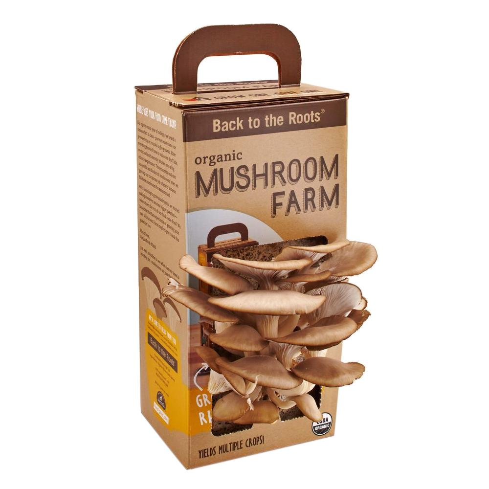 Back to the Roots Mushroom Farm Kit