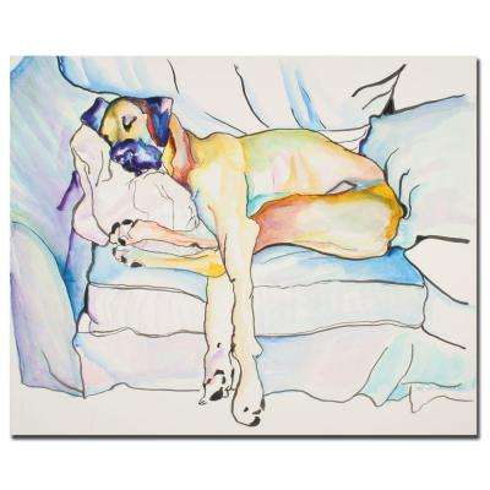 35 in. x 47 in. Sleeping Beauty Canvas Art