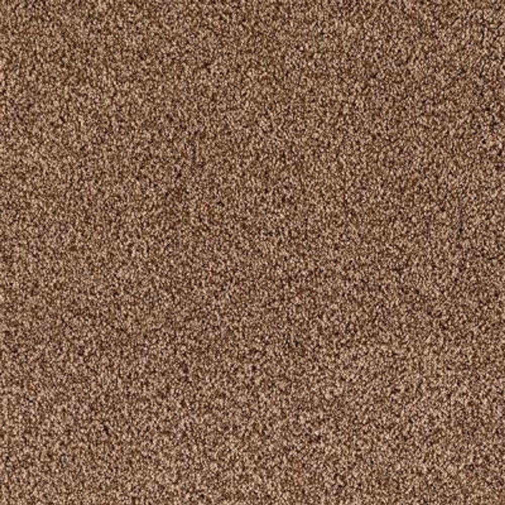 Carpet Sample - Lavish II - Color French Toast Texture 8