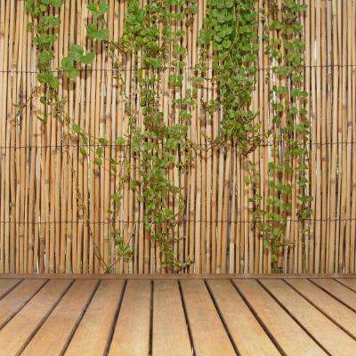 6 ft. H x 16 ft. L Natural Jumbo Reed Bamboo Fencing