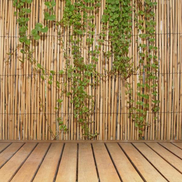 Backyard X Scapes 6 Ft H X 16 Ft L Natural Jumbo Reed Bamboo Fencing 20 Br6 The Home Depot
