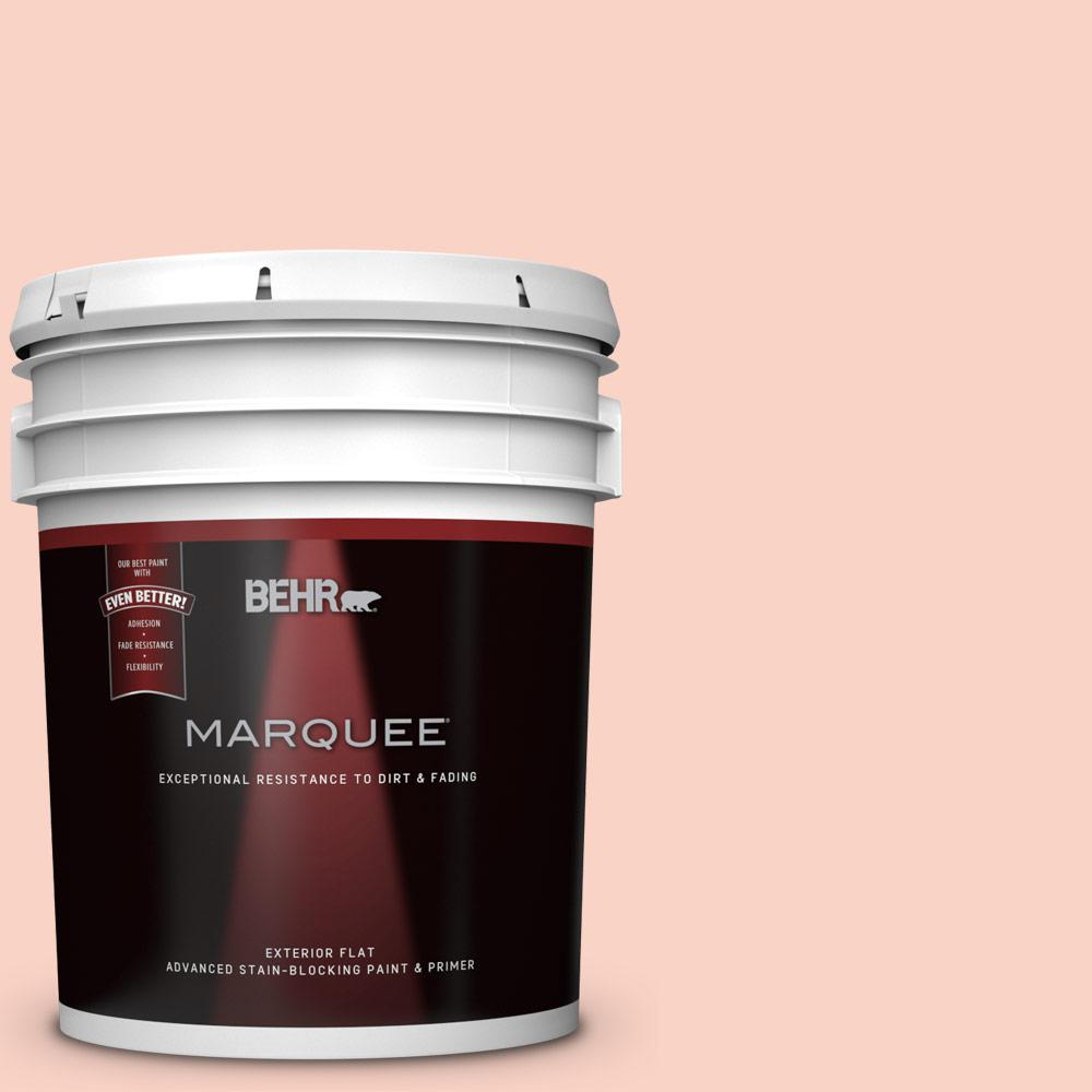 BEHR MARQUEE 1-gal. #M200-4 Coral Cloud Flat Exterior Paint-445401 ...