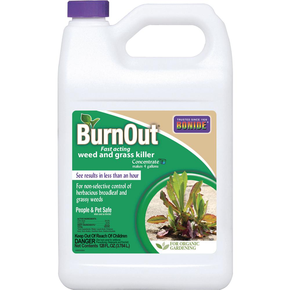 BONIDE 1 Gal. Burnout Fast-Acting Weed and Grass Killer Concentrate