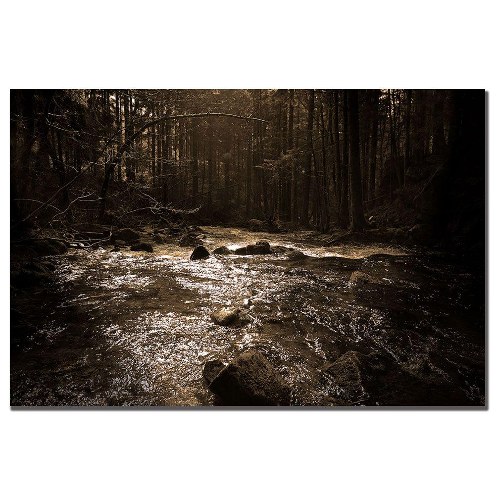 14 in. x 19 in. The River Canvas Art