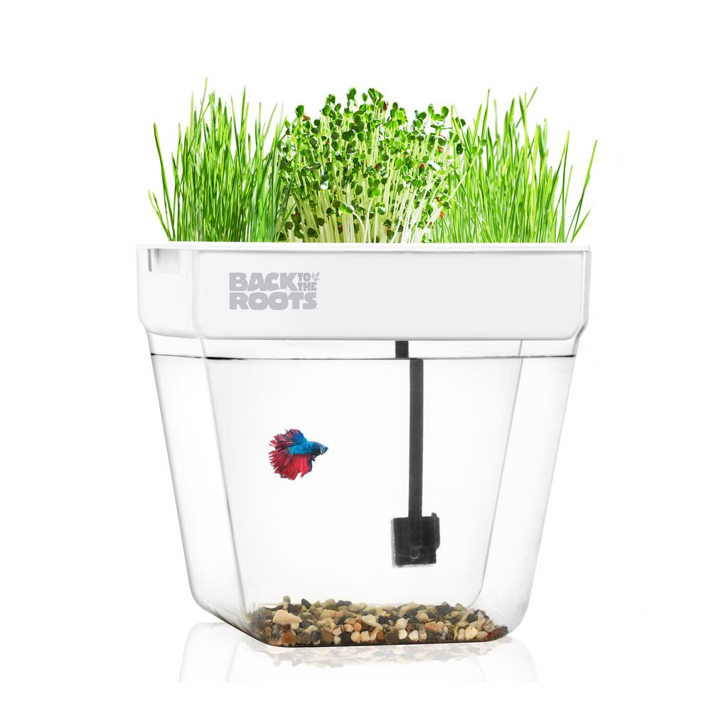 back to the roots premium acrylic water garden fish tank