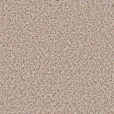 Carpet Sample - Trendy Threads I - Color Park City Texture 8 in. x 8 in.