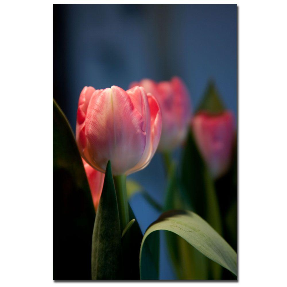 24 in. x 16 in. Pink Tulip IV Canvas Art