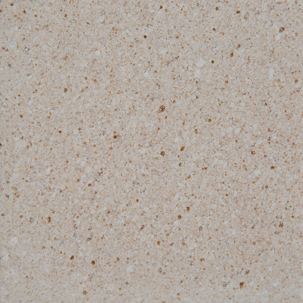 4 in. Colorpoint Technology Vanity Top Sample in Beige