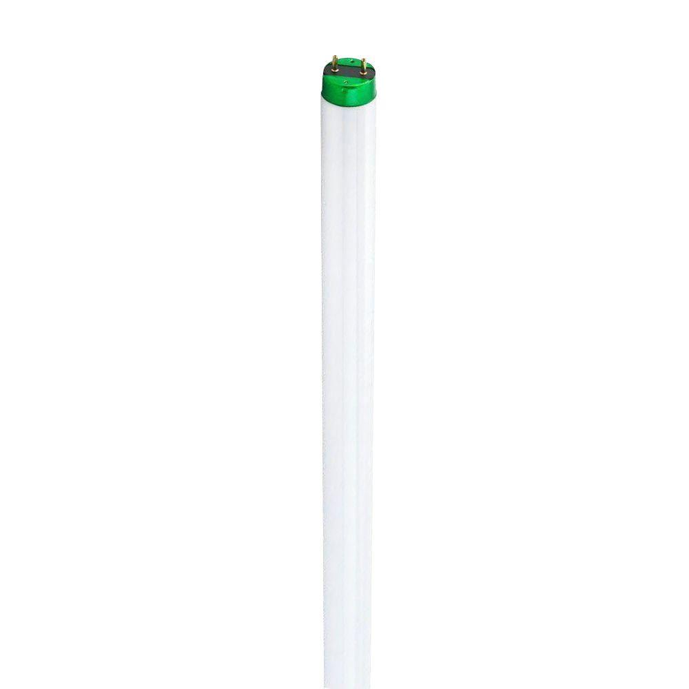 Philips 4 ft t12 40 watt daylight deluxe linear fluorescent light philips 4 ft t12 40 watt daylight deluxe linear fluorescent light bulb 10 pack 387522 the home depot buycottarizona