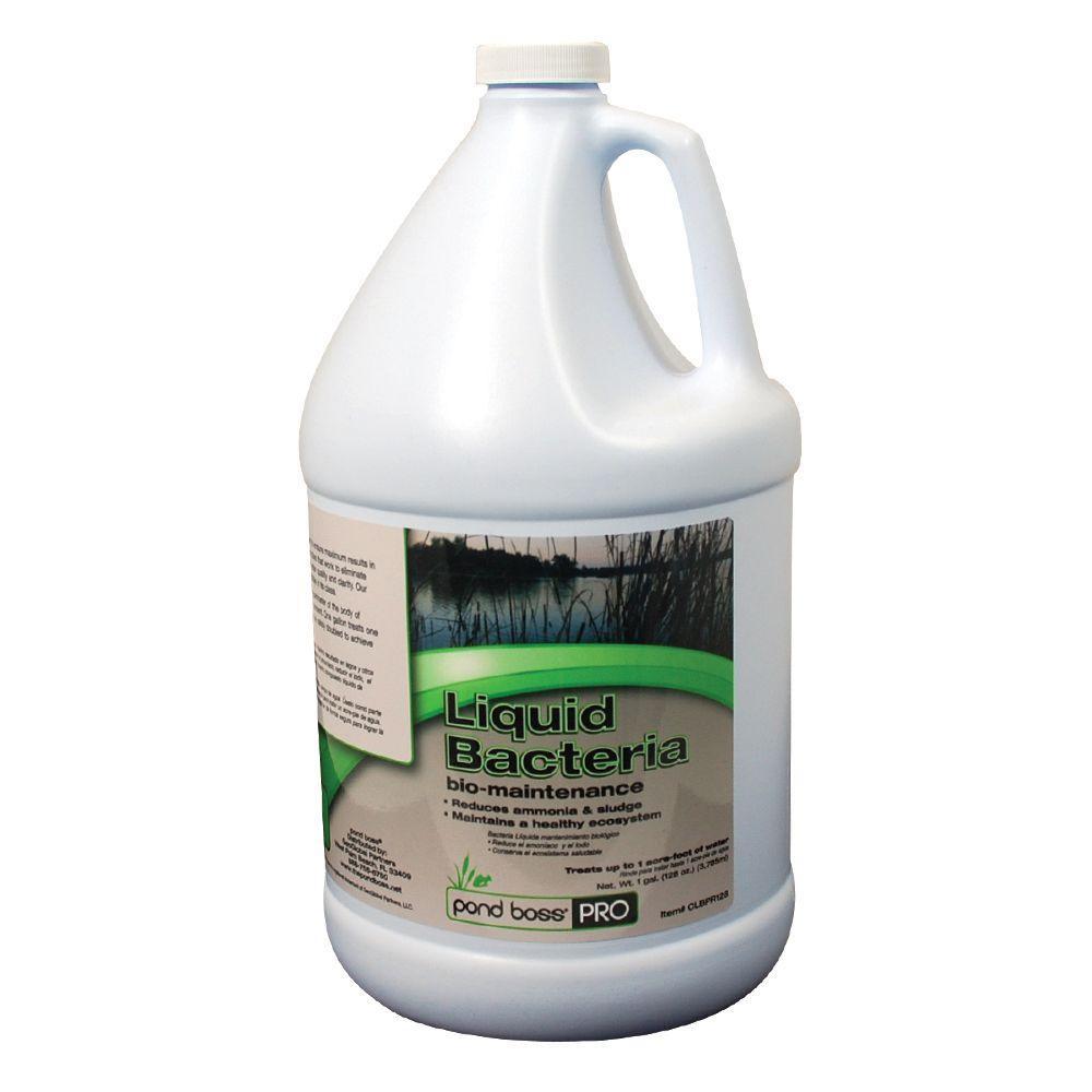 1 Gal. Liquid Bacteria