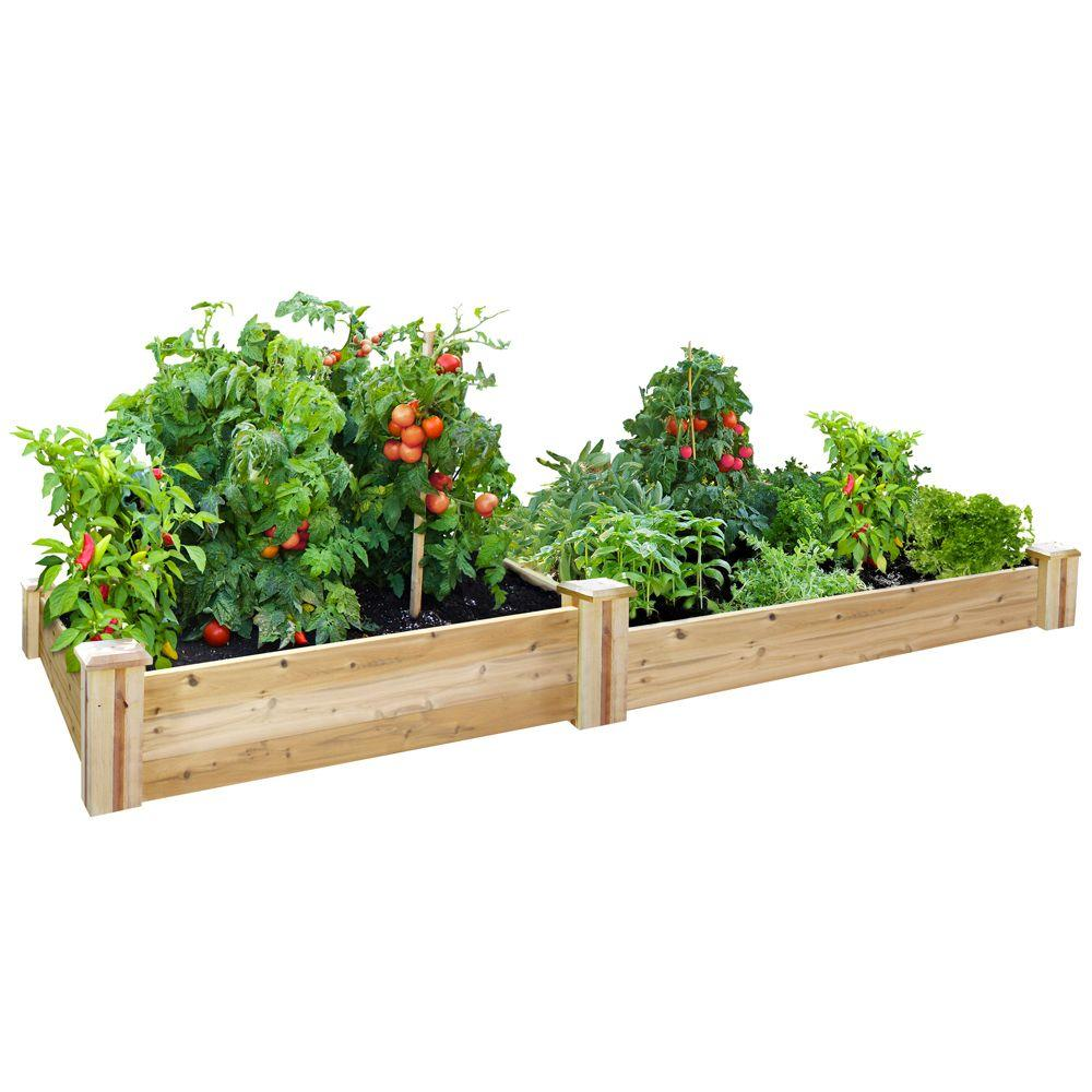 Greenes fence 48 in x 96 in cedar raised garden bed rc Raised garden beds