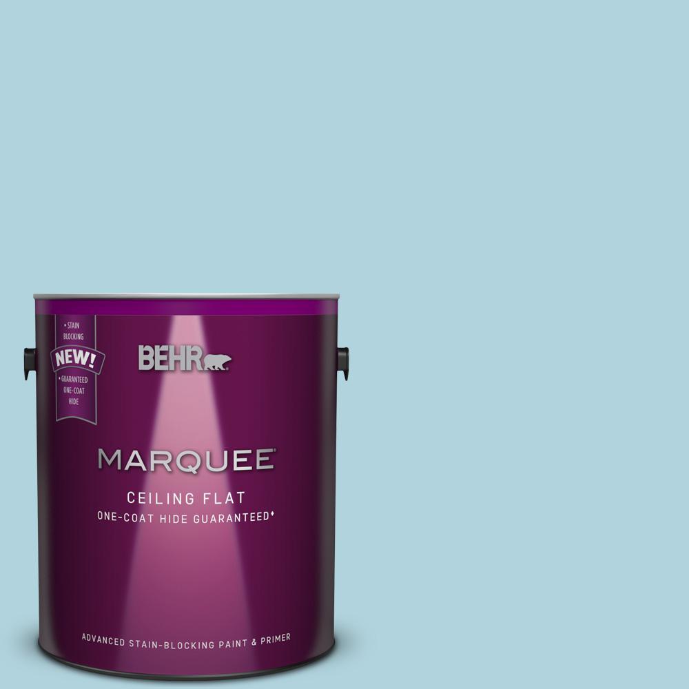 1 Gal. #MQ4-55 1-Coat Hide Tinted to Balboa Interior Ceiling Paint