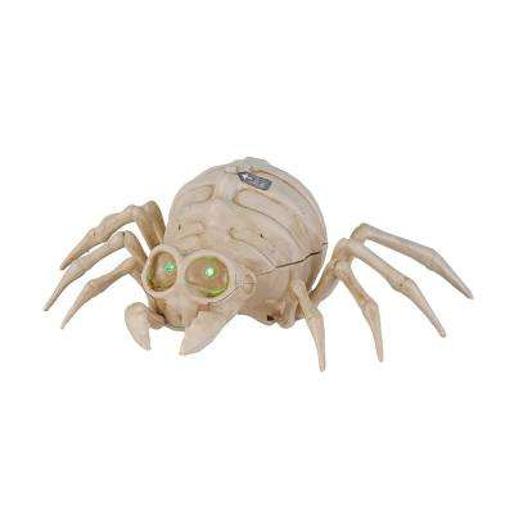 10 in. Skeleton Spider