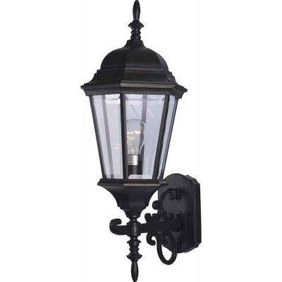 1-Light Black Outdoor Wall Sconce