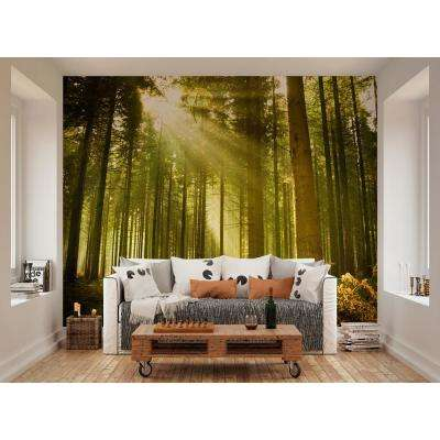 Evergreen Wall Mural