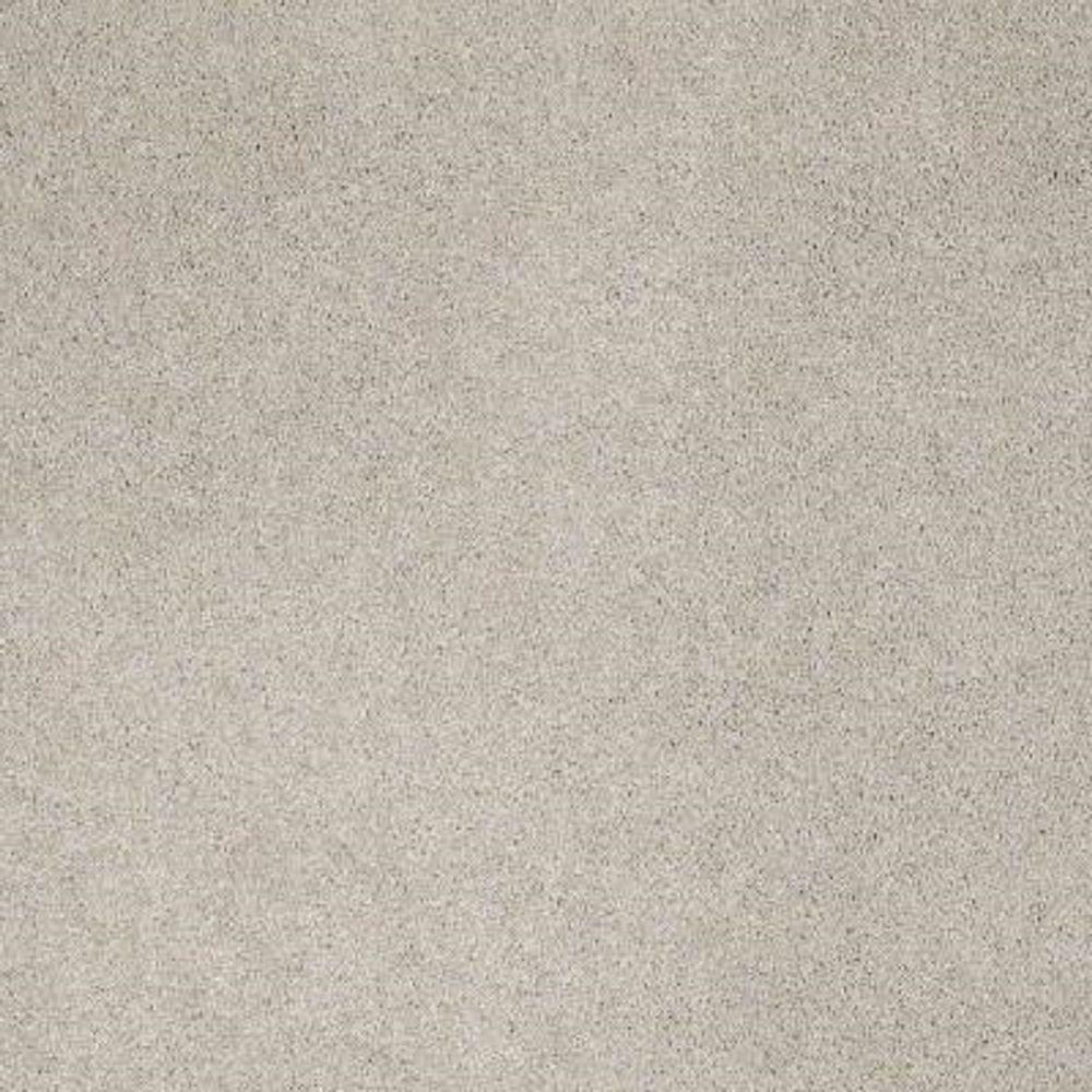 Carpet Sample - Tremendous II - Color Iris Texture 8 in. x 8 in.