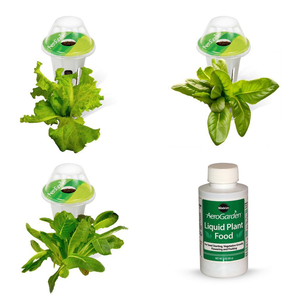 Heirloom Salad Greens Seed Pod Kit (3-Pod)