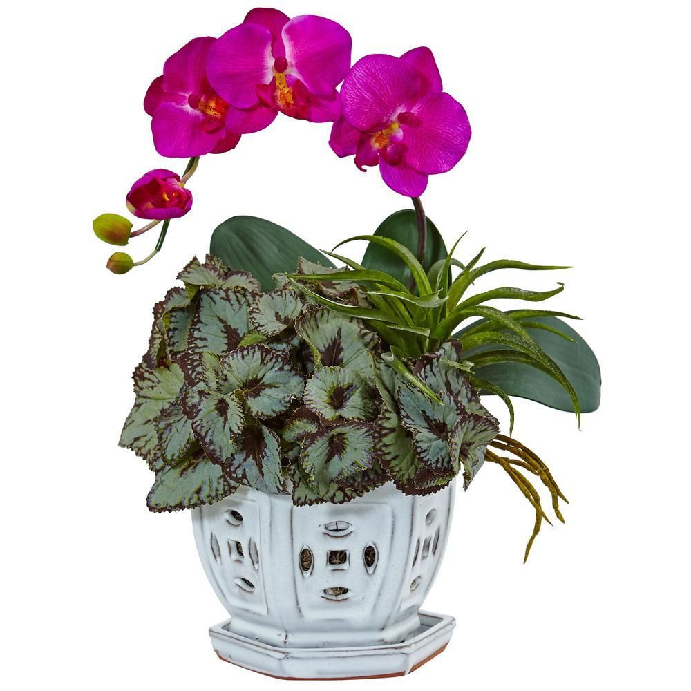 Indoor Mini Phalaenopsis Orchid and Succulent Silk Arrangement in Decorative Planter