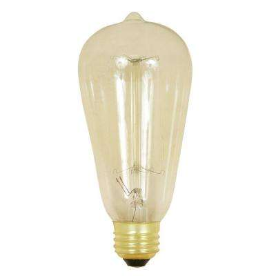 60-Watt Soft White ST19 Incandescent Original Vintage Style Light Bulb
