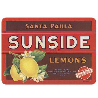 Sunside Lemons Multi 22 in. x 31 in. Premium Comfort Mat