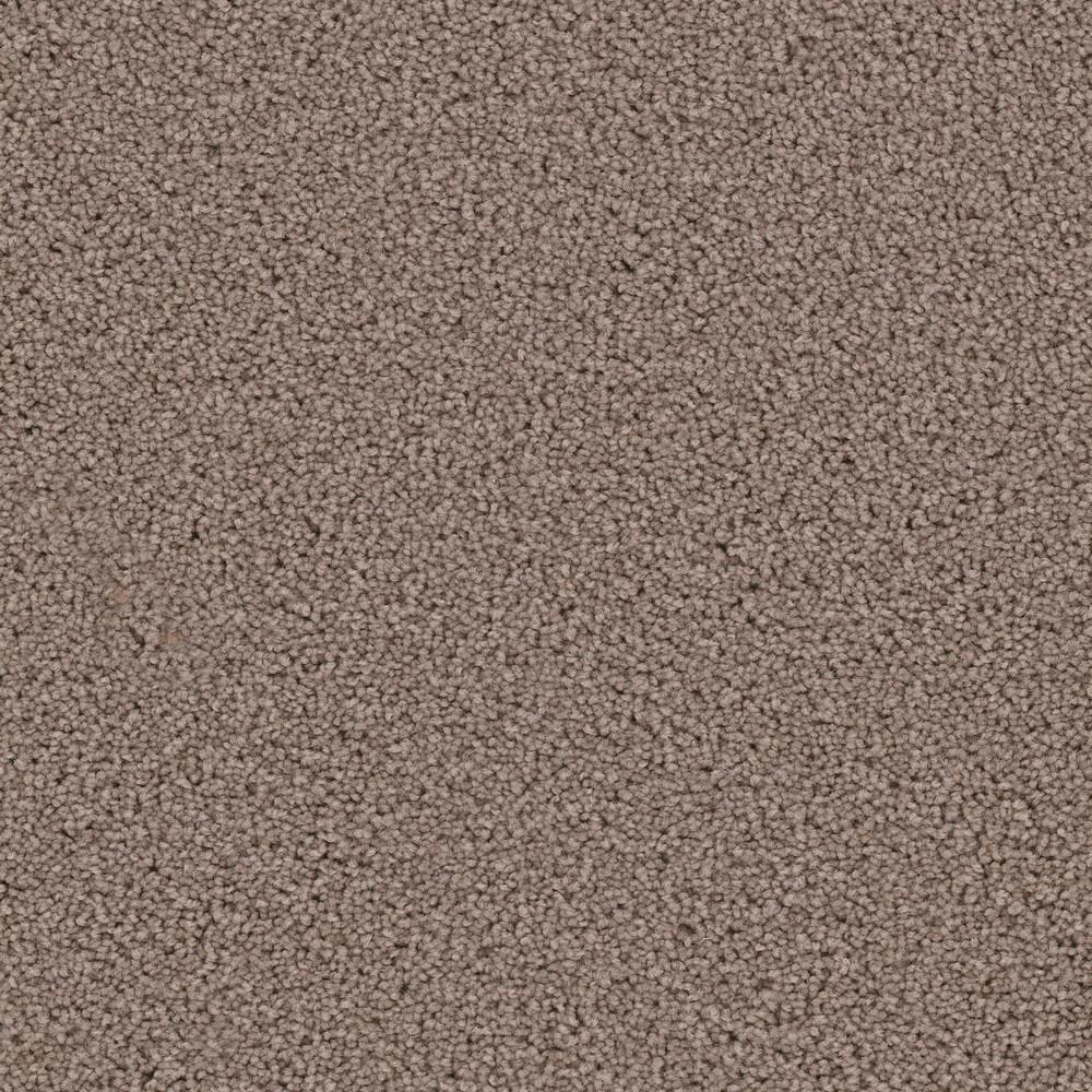 Home Decorators Collection Carpet Sample Kalamazoo Ii