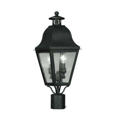 2-Light Outdoor Black Incandescent Post Lantern