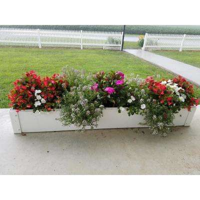 8.5 in. x 48 in. x 6 in White Vinyl Raised Garden Bed