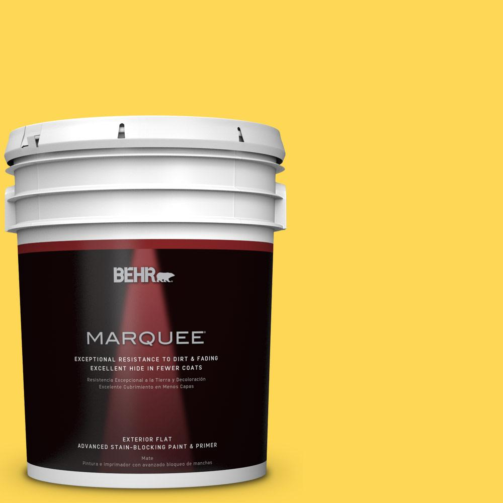 5-gal. #P300-6 Buzz-In Flat Exterior Paint