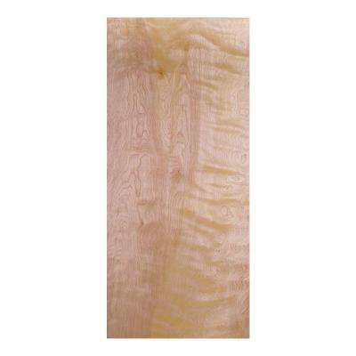 Smooth Flush Hardwood Hollow Core Birch Veneer Composite Interior Door Slab