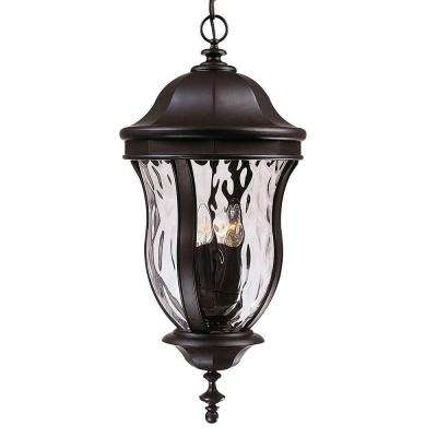 4-Light Outdoor Hanging Black Lantern with Clear Watered Glass