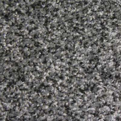 Carpet Sample - Shackelford II - Color Excellence Texture 8 in. x 8 in.
