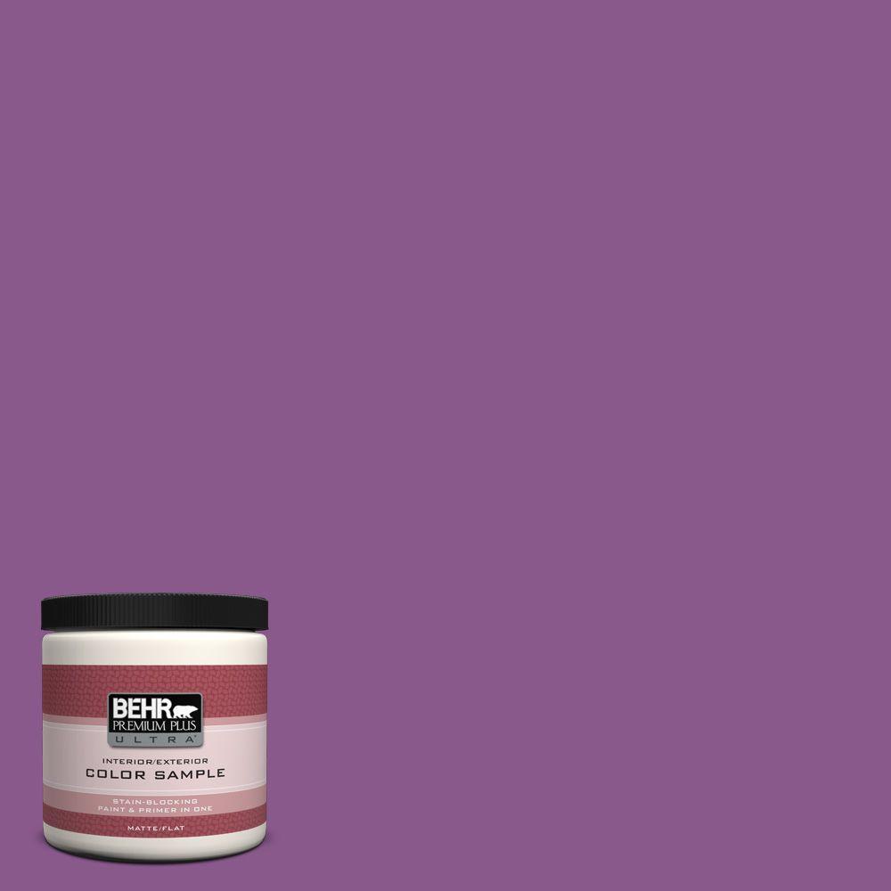 BEHR Premium Plus Ultra 8 oz. #670B-7 Candy Violet Interior/Exterior Paint Sample