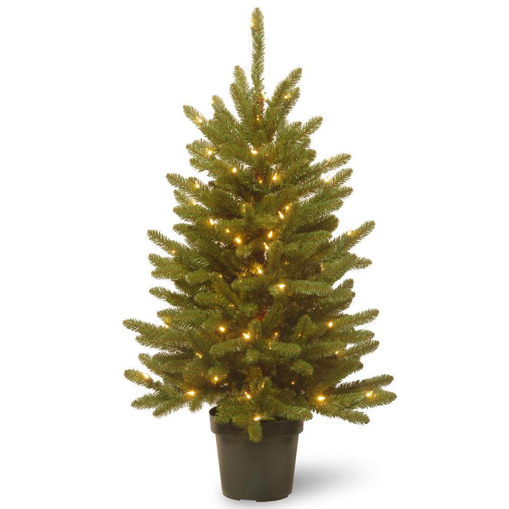 Pre Dressed Christmas Trees: National Tree Company 4 Ft. Kensington Artificial