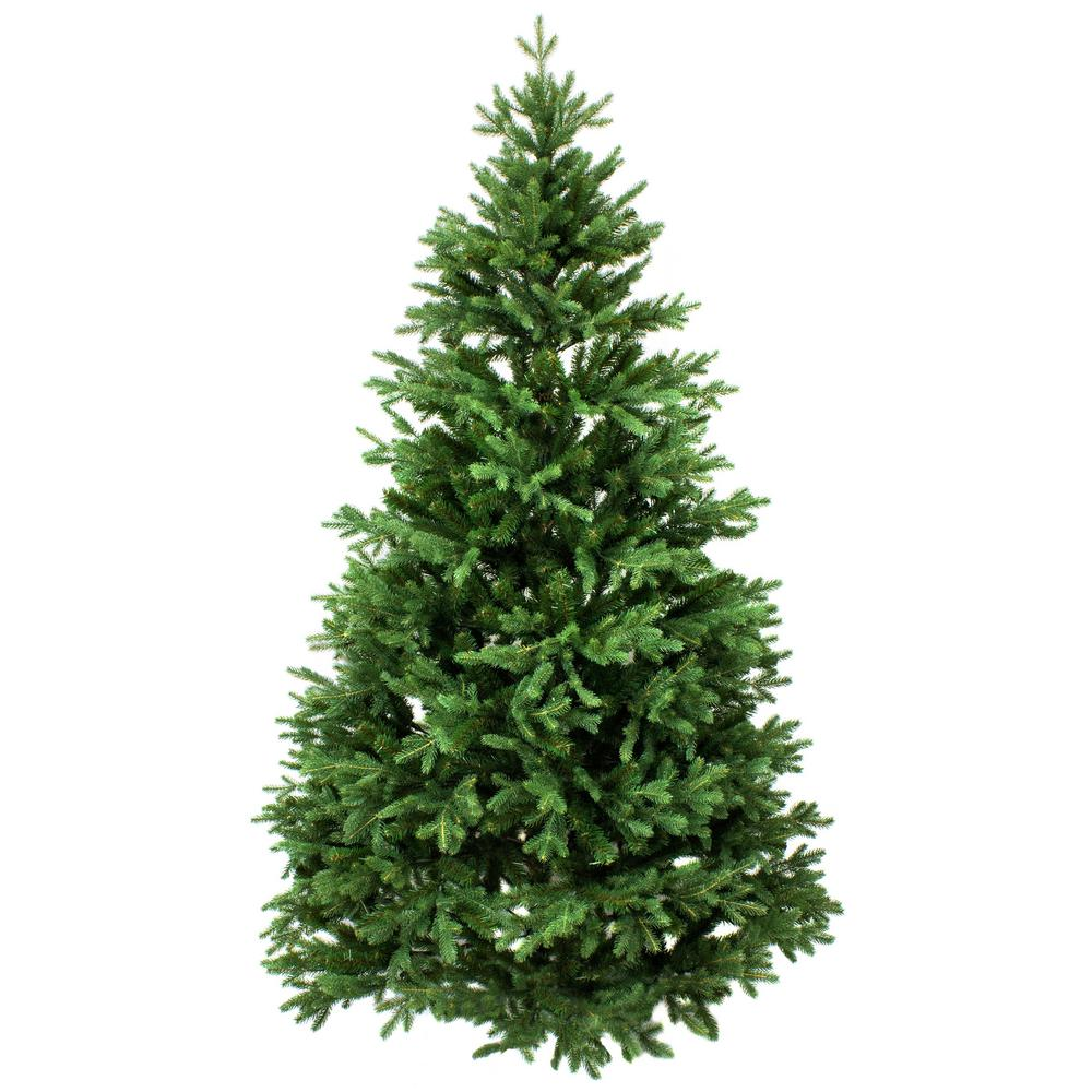 Oregon Christmas Trees.Online Orchards 4 Ft To 5 Ft Freshly Cut Noble Fir Live Christmas Tree Real Natural Oregon Grown
