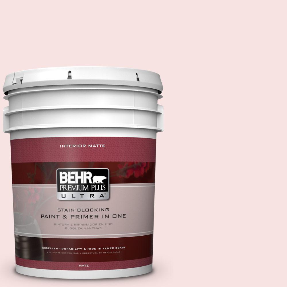 5 gal. #160A-1 Cream Rose Flat/Matte Interior Paint