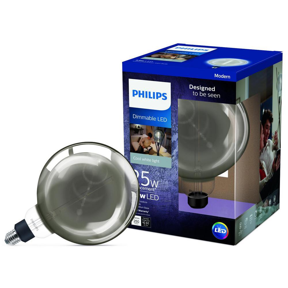 25-Watt Equivalent G63 Dimmable LED Oversized Light Bulb Cool White Glass
