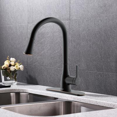 Classic Series Single-Handle Standard Kitchen Faucet in Oil Rubbed Bronze