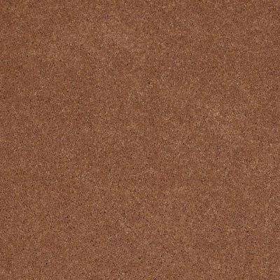 Carpet Sample - Tremendous I - Color Ancient Texture 8 in. x 8 in.