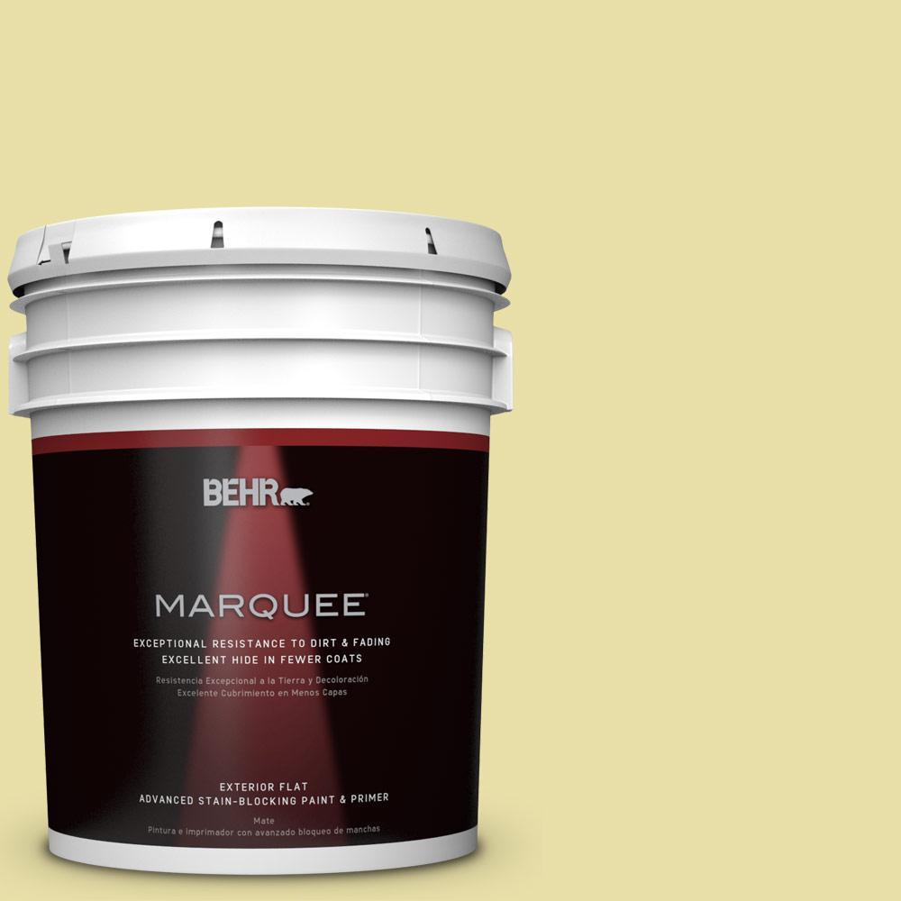 5-gal. #PPU8-12 Refreshing Tea Flat Exterior Paint