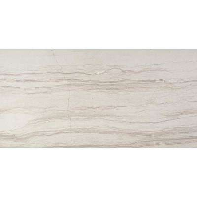 Action Cue Polished 11.42 in. x 23.23 in. Porcelain Floor and Wall Tile (9.21 sq. ft. / case)