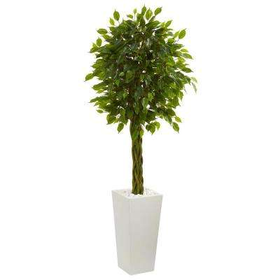 5 ft. High Indoor/Outdoor Braided Ficus Artificial Tree in White Tower Planter