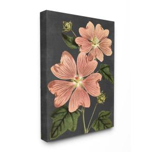 ''Botanical Drawing Pink Flower On Black Design'' by Lettered and Lined Canvas Wall Art 48 in. x 36 in.