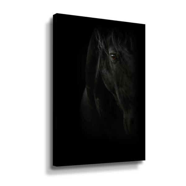 ArtWall Black Pearl' by PhotoINC Studio Canvas Wall Art 5pst221a2436w
