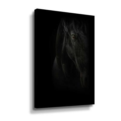 Black Pearl' by  PhotoINC Studio Canvas Wall Art