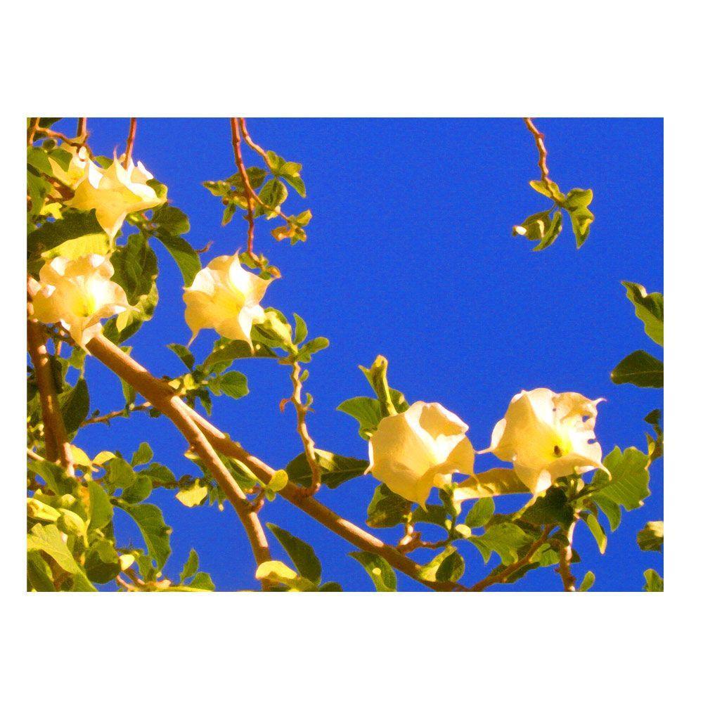 35 in. x 47 in. Flowering Tree Canvas Art