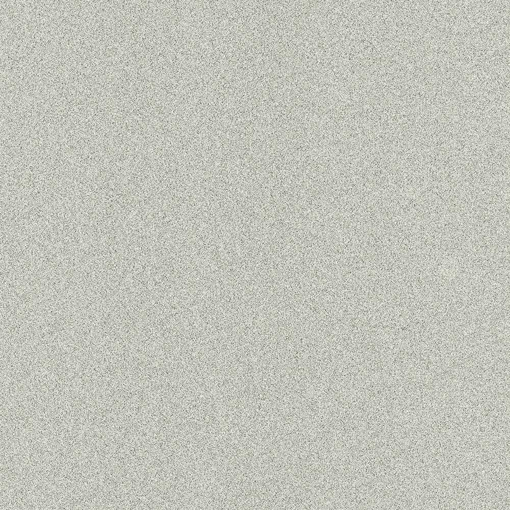 Indoor/Outdoor - Carpet Tile - Carpet & Carpet Tile - The Home Depot